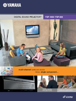 Digital Sound Projector YSP-1000 / YSP-800 Brochure