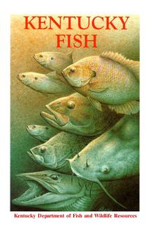 Western Kentucky Fish Species by Kentucky