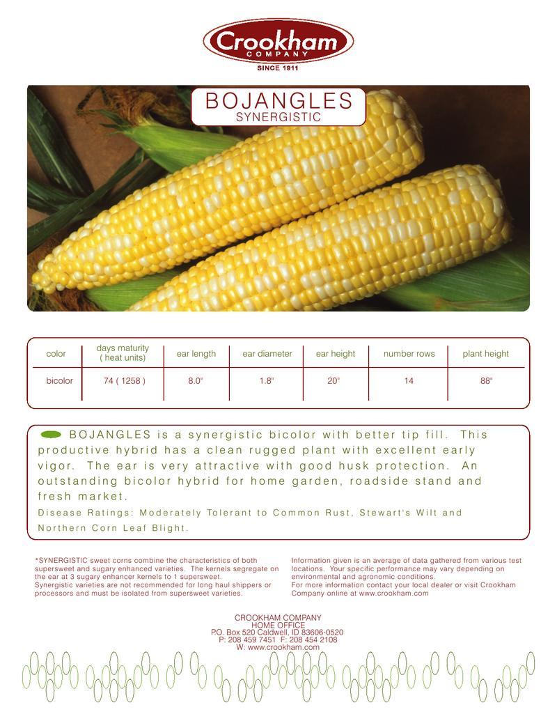 Bojangles Sweetcorn Seeds by Crookham Company