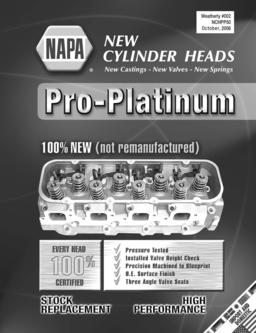 Pro-Platinum New Cylinder Heads