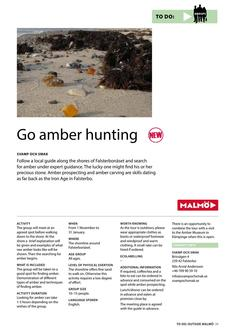Go Amber Hunting 2017