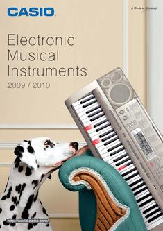 Electronic Musical Instruments 2009/2010