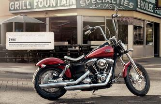 Harley Davidson Dyna Family Parts & Accessories 2013