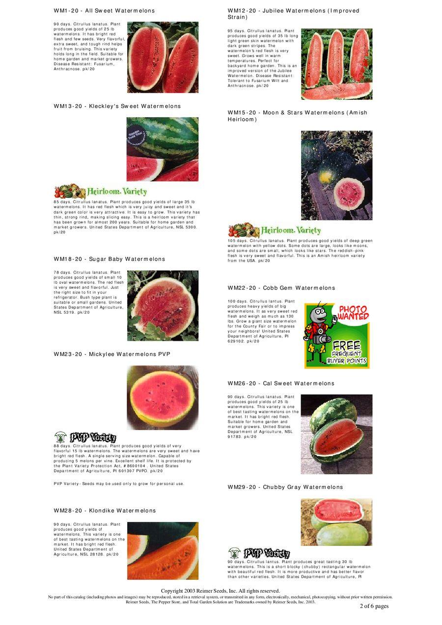 Chubby gray watermelon seeds