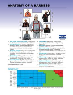Catalogue: International Safety Systems Inc. Anatomy of a Harness