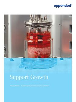 Support Growth 2017