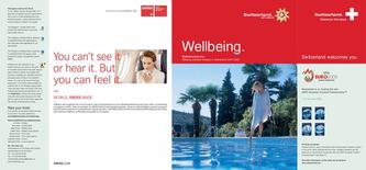 Wellbeing 2008