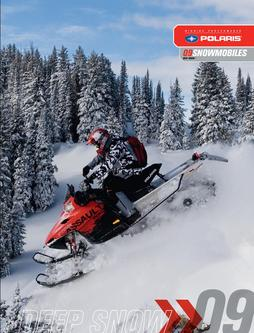 2009 Deep Snow Snowmobiles