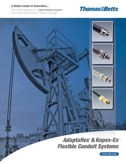 Adaptflex / Kopex-EX Cat 21