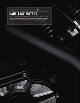 HABILLAGE MOTEUR d'origine H-D 2015 (French)