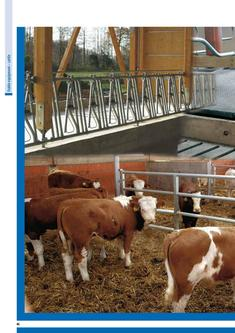 Stable equipment cattle 2015