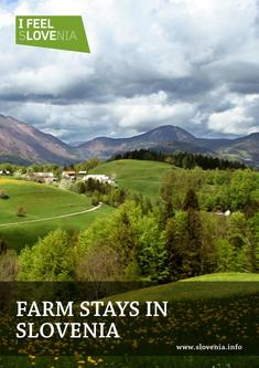 Farm Stays in Slovenia 2016