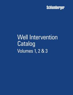 Well Intervention 2016