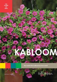 Kabloom Leaflet