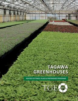 Tagawa TGE-plus Programs