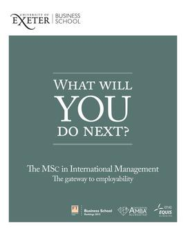 MSc International Management