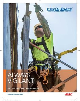 Pro-Safe Fall Protection 2018