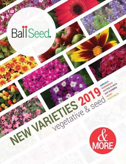 2019 Ball Seed New Varieties